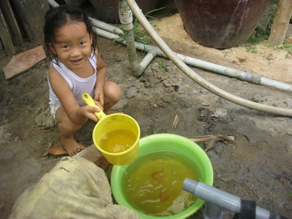 tác hại của nước phèn